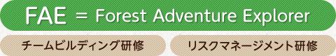 FAE=Forest Adventure Explorer