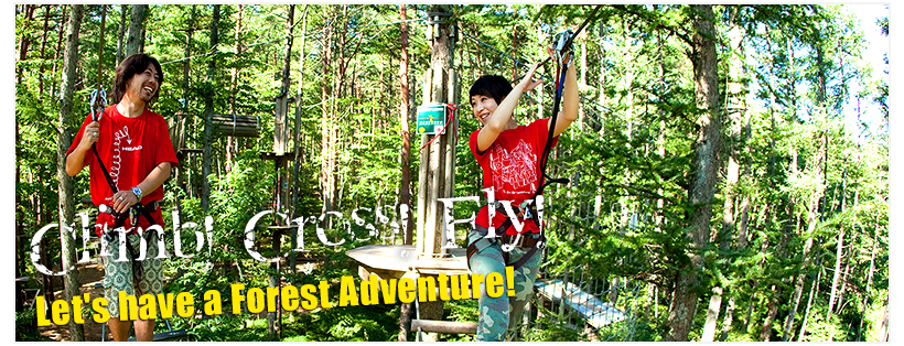 Let's go have a Forest Adventure!